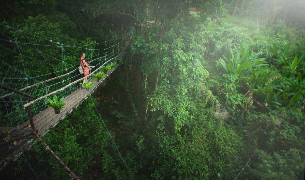 rainforest trekking tips