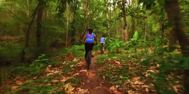St Lucia Biking