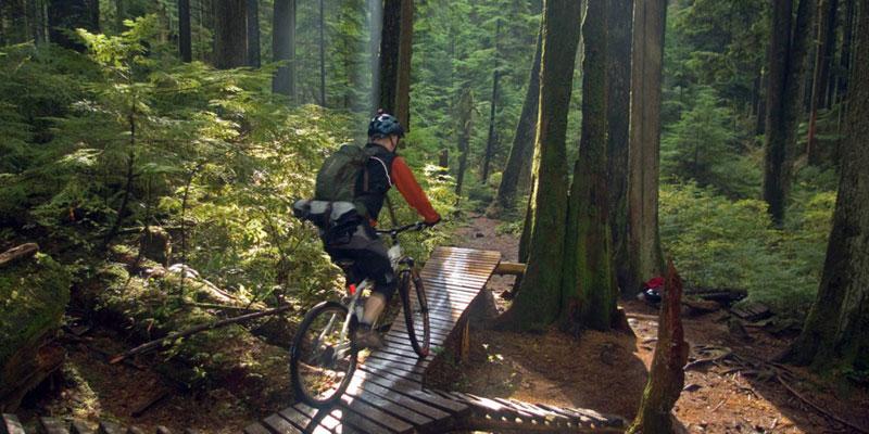 Ma Da Forest Biking