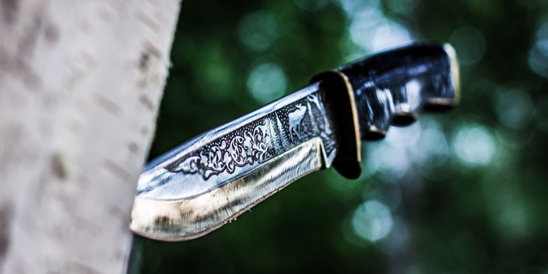 Trowing knife in the woods